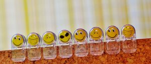 smilies-1520865-300x127 Personality Types